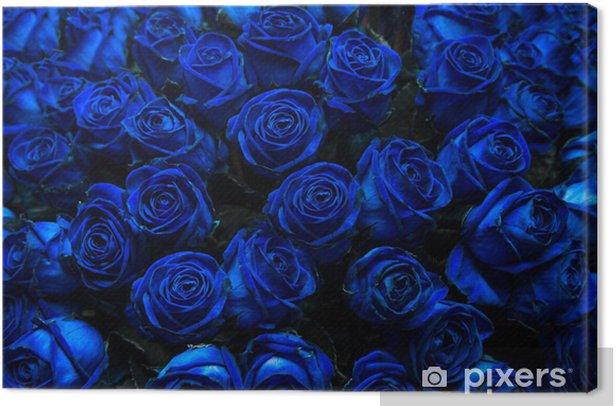 Obraz na płótnie Niebieskie róże - Tekstury