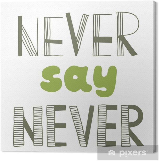 Obraz na płótnie Nigdy nie mów nigdy, cytuję, - Tematy