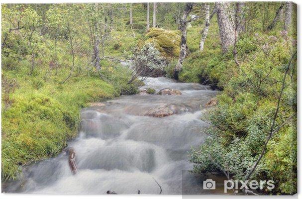 Obraz na płótnie Norweski leśny - Europa