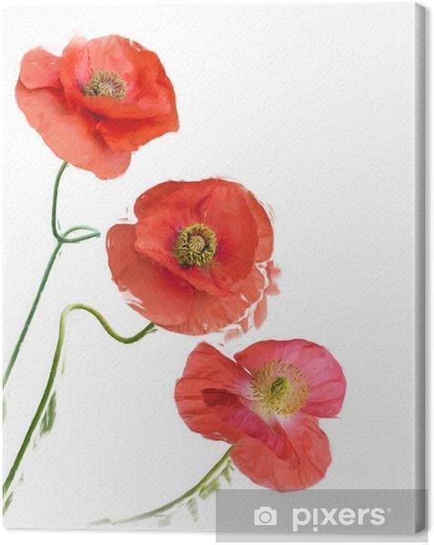 Obraz na płótnie Obraz cyfrowy kwiaty maku - Rośliny i kwiaty
