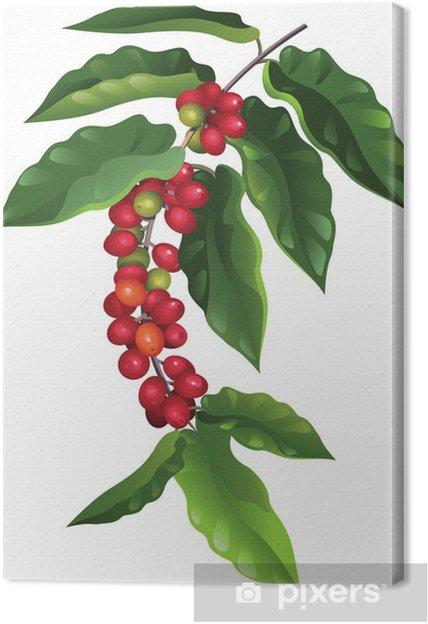 Obraz na płótnie Oddział kawy - Pory roku