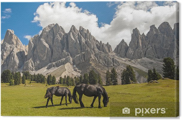 Obraz na płótnie Odle Val di Funes, Południowy Tyrol, Włochy - Europa