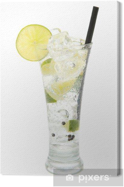 Obraz na płótnie Odświeżający tonik gin - Alkohol