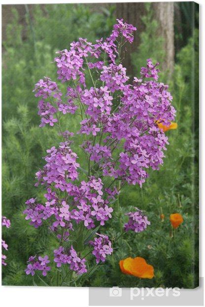 Obraz na płótnie Ogrody kwiatowe - Kwiaty