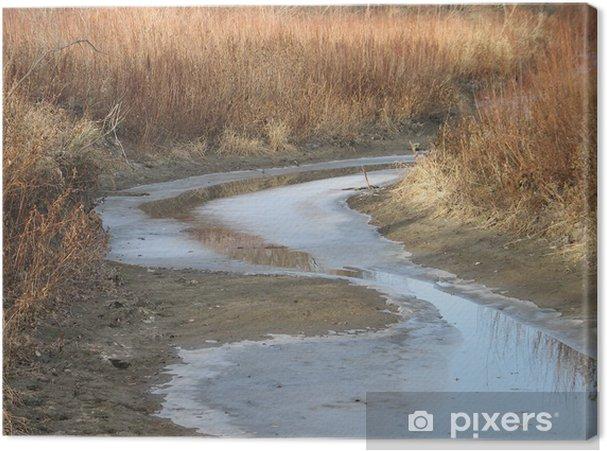 Obraz na płótnie Omand Creek w zimie - Cuda natury