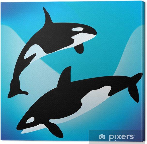 Obraz na płótnie Orki - Zwierzęta żyjące pod wodą