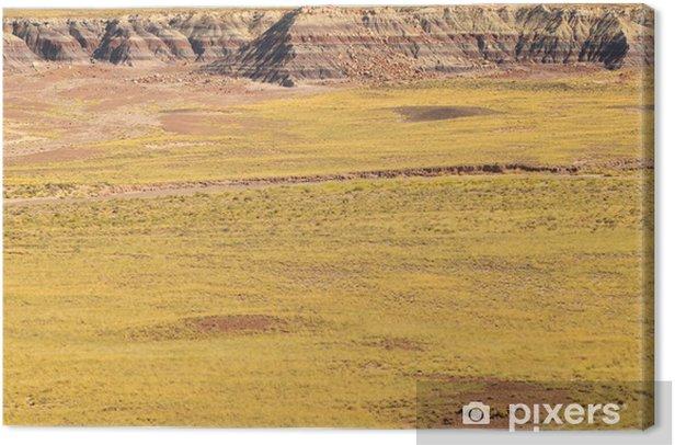 Obraz na płótnie Painted Desert - Pustynie