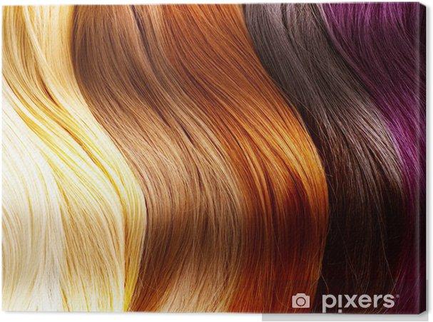 Obraz na płótnie Paleta kolorów włosów -