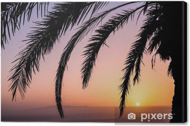 Obraz na płótnie Palm i piękny zachód słońca - Cuda natury