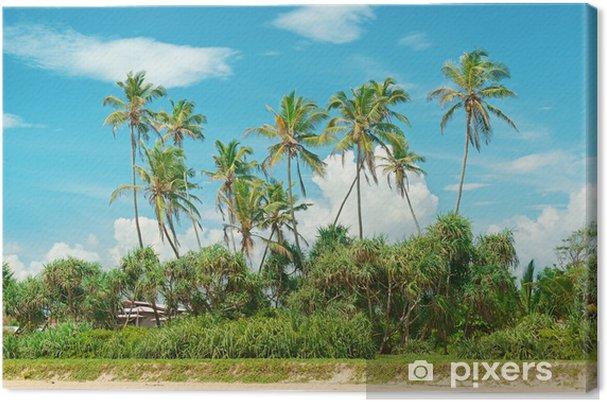 Obraz na płótnie Palmy kokosowe na piaszczystym brzegu - Tematy