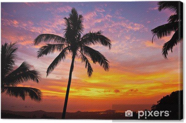 Obraz na płótnie Palmy na tle pięknego zachodu słońca - Tematy