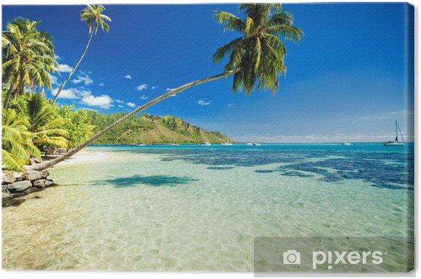 Obraz na płótnie Palmy wiszące nad przepięknej laguny - Tematy