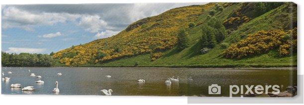 Obraz na płótnie Panorama jeziora St. Margarity w Holyrood Park (Edynburg) - Europa