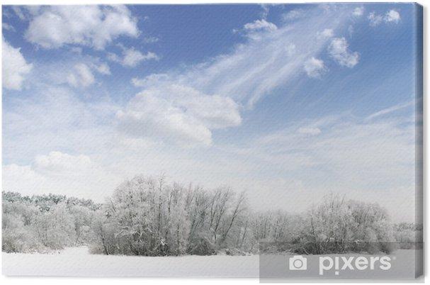 Obraz na płótnie Panorama zimowy las z nieba, drzewa i śnieg - Cuda natury