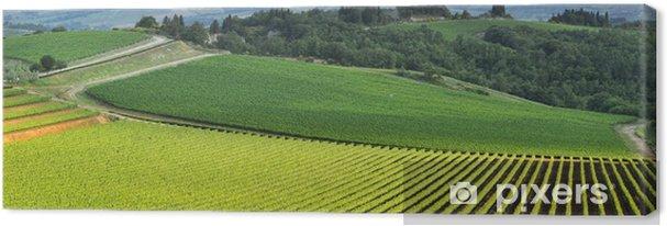Obraz na płótnie Panoramiczny widok z winnicy w zielonej Toskanii - Europa