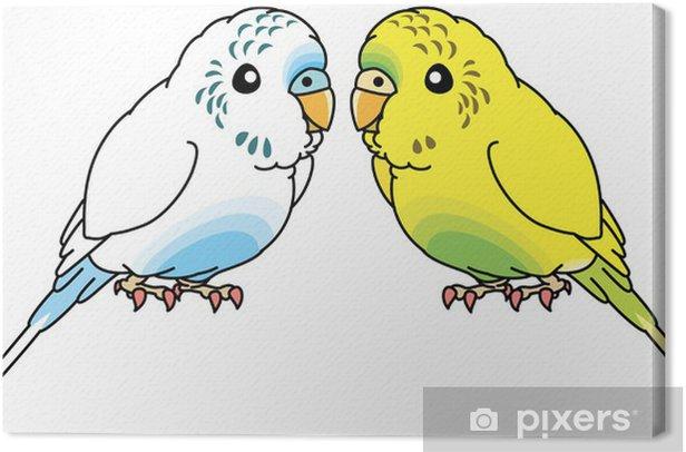 Obraz na płótnie Papużka falista - Naklejki na ścianę