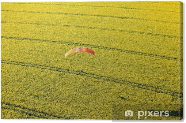 Obraz na płótnie Parapente champ de rzepiku - Pory roku