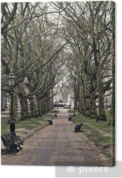 Obraz na płótnie Park - Pory roku