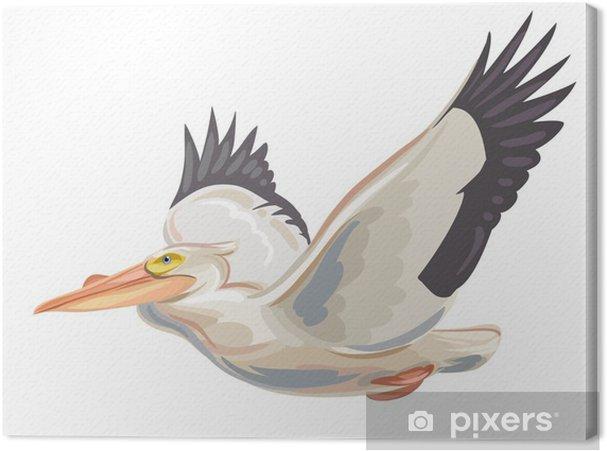 Obraz na płótnie Pelikan - Ptaki