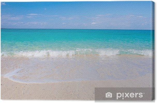 Obraz na płótnie Pełna Okinawa Hai (Onna) - Wakacje