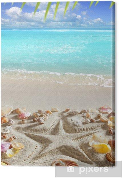 Obraz na płótnie Piaszczysta plaża rozgwiazda morze tropikalnych Karaibów print - Ameryka