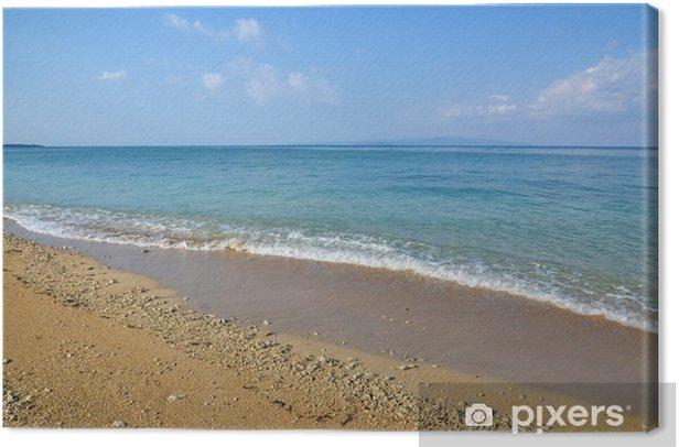 Obraz na płótnie Piaszczysta plaża szczegóły - Wakacje