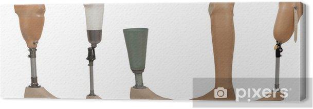 Obraz na płótnie Pięć protezy nogi samodzielnie na białym tle - Zdrowie i medycyna