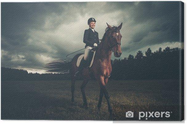 Obraz na płótnie Piękna dziewczyna siedzi na koniu na zewnątrz przed nastrojowym niebem - Przemysł