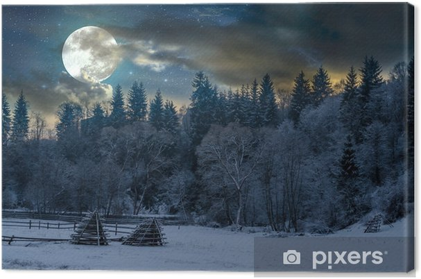 Obraz na płótnie Piękna noc w zimie. krajobraz górski - Krajobrazy