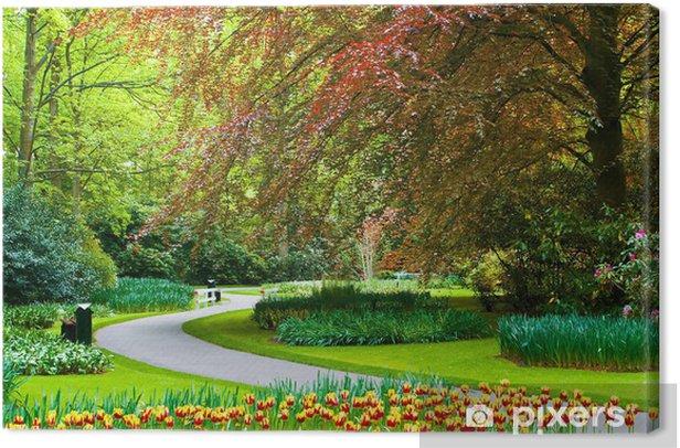 Obraz na płótnie Piękna wiosna ogród Keukenhof - Europa