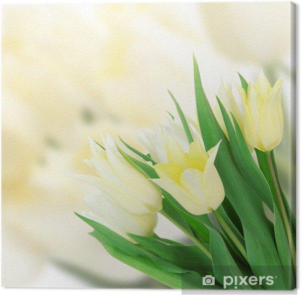 Obraz na płótnie Piękne białe tulipany na jasnym tle - Tulipany