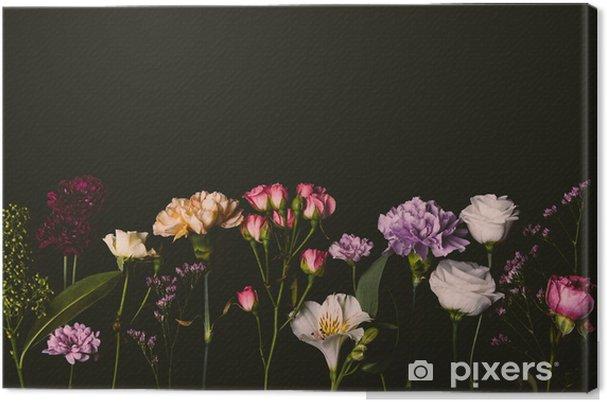 Obraz na płótnie Piękne różne świeże kwiaty kwitnące na czarnym tle - Rośliny i kwiaty