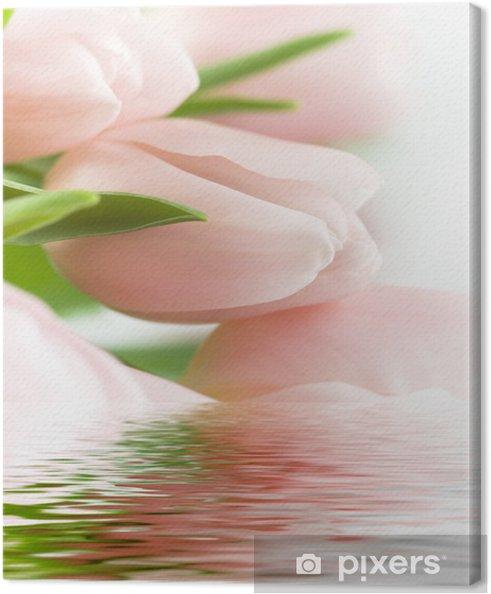 Obraz na płótnie Piękne różowe tulipany - Tematy