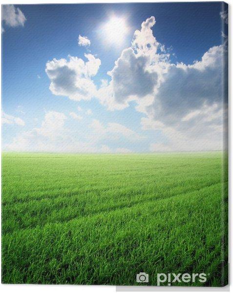 Obraz na płótnie Piękny krajobraz lato z promieni słonecznych i zielony trawnik - Pory roku