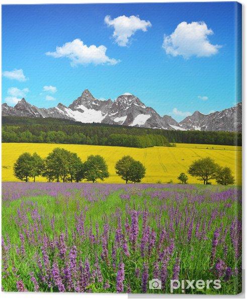 Wspaniały Obraz na płótnie Piękny wiosenny krajobraz górski z łąki FS69