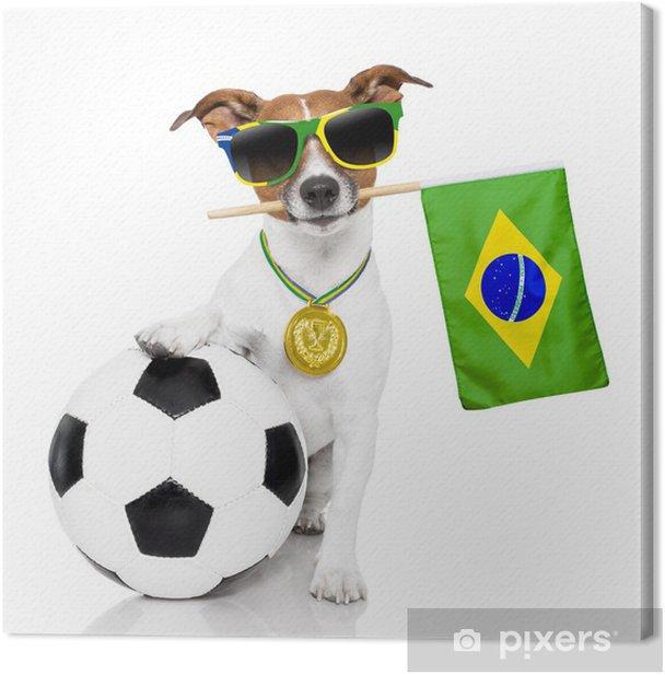 Obraz na płótnie Pies jak piłka nożna z medalem i flaga - Mecze i zawody