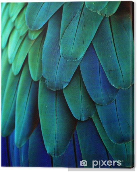 Obraz na płótnie Pióra ara (niebieski / zielony) - iStaging