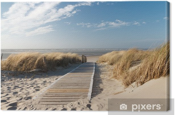 Obraz na płótnie Plaża Morza Północnego - Morze i ocean