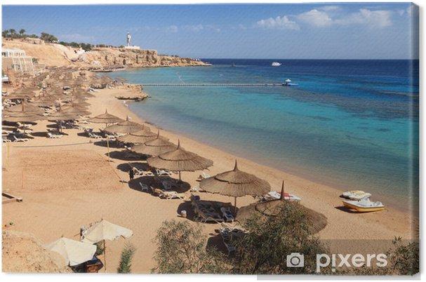 Obraz na płótnie Plaża na Morze Czerwone, Sharm El Sheikh - Afryka