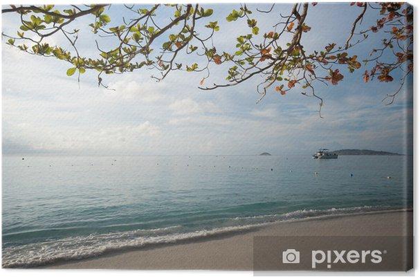 Obraz na płótnie Plaża na wyspie similan rano, Tajlandii - Wyspy