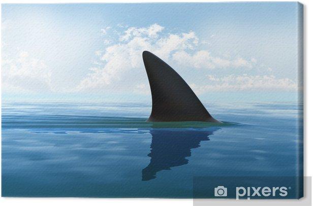 Obraz na płótnie Płetwa rekina nad wodą - Znaki i symbole