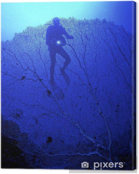 Obraz na płótnie Płetwonurek w wodzie niebieski z niebieskim światłem między niebieskim koralem - Sporty wodne