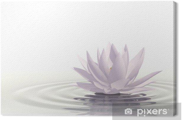 Obraz na płótnie Pływające grzybienie - Do salonu SPA & Wellness