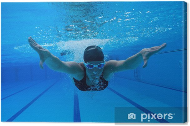Obraz na płótnie Pływanie pod wodą - Sporty indywidualne