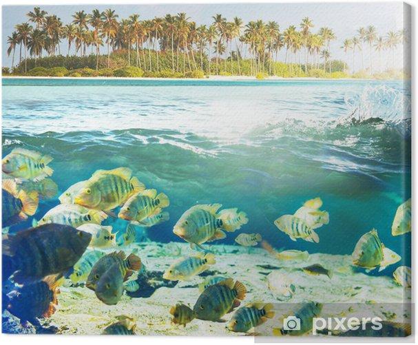 Obraz na płótnie Podwodne ryb - Pod wodą