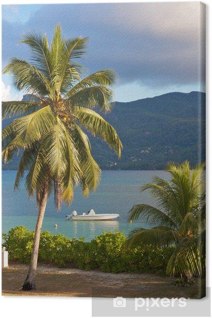 Obraz na płótnie Pojedyncze palmy kokosowe na brzegu Cerf Island, Seszele - Natura i dzicz