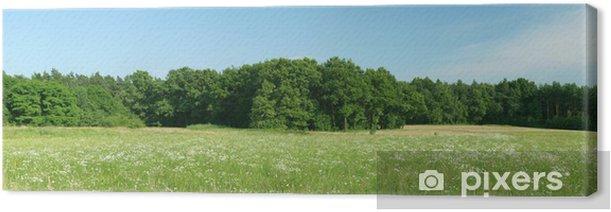 Obraz na płótnie Polana - Rolnictwo