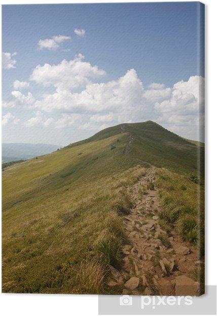 Obraz na płótnie Polonina Carynska. Bieszczady Mountains - Tematy