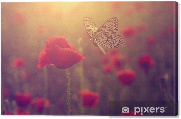 Obraz na płótnie Poppy i motyl - Kwiaty