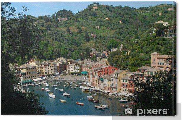 Obraz na płótnie Portofino, widok wśród drzew oliwnych - Wakacje